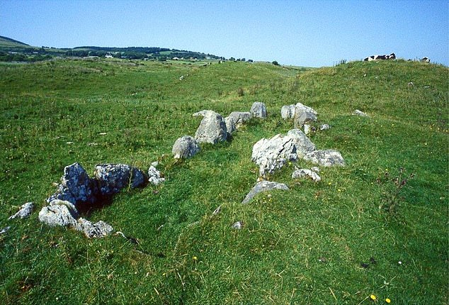 The team found an 'over-representation' of males compared to females in the megalith tombs on the British Isles. A likely parent-offspring relation was discovered for individuals in the Listhogil Tomb at the Carrowmore site and Tomb 1 at Primrose Grange (pictured)