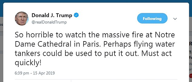 US President Donald Trump has faced backlash on Twitter for being a 'backseat firefighter' and suggesting French authorities should use flying water tankers