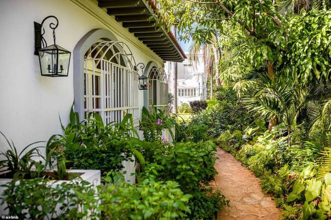 Trees and plants line up the Castro regime's mansion which is being rented on Airbnb for $650 a night. It is located in Havana
