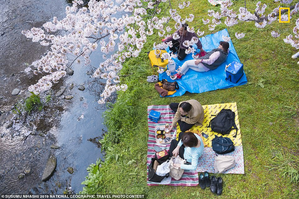 Susumu Nihashi took this photograph of people enjoying a picnic under a cherry tree while it was in blossom. The shot was taken by the Negawa River in Tokyo. The photographer explained that the Japanese love cherry blossoms and the waterway is a popular spot as the banks are lined with trees and they come into bloom during spring