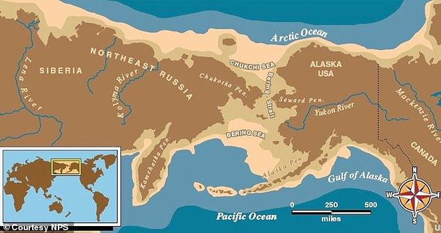 , Anthropology: Native Americans did NOT come from Japan but Siberia, 15,000-year-old TEETH indicate, The Today News USA