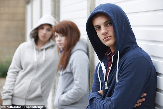 Dame Carol Black's review for the Home Office said a resurgence in crack cocaine use led to a rise in killings while the growth of county lines gangs has increased levels of violence. A stock photo is used above for illustrative purposes only [File photo]