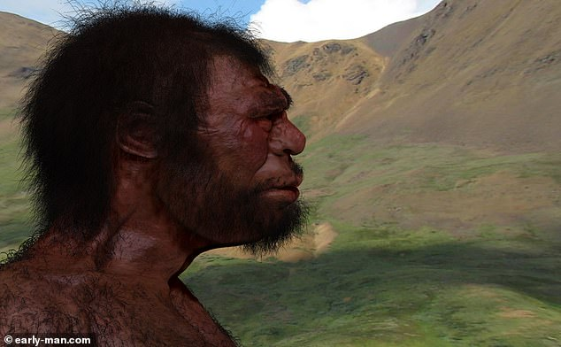 The existence of this ancient group is suggested by the genetic analysis of Denisovan (pictured, artist's impression) and Neanderthal remains, along with modern human genomes
