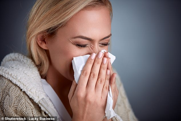 Common cold virus could one day be used to treat cancer, research shows (stock)