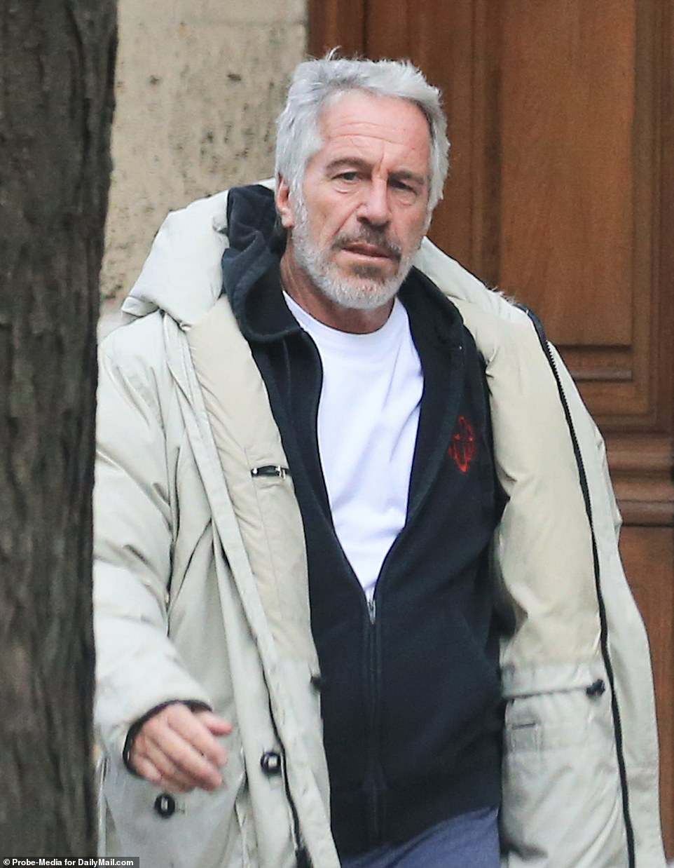 Epstein's suicide comes just two weeks after he was hospitalized following what may have been an initial attempt to take his own life. He is pictured in New York in January