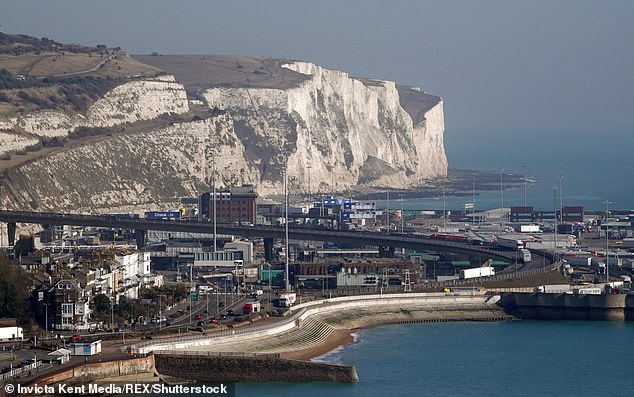 Lord Wolfsonsaid Next had moved all its imports and exports out of the French port of Calais to other ports in case of problems between the French hub and Dover (pictured)