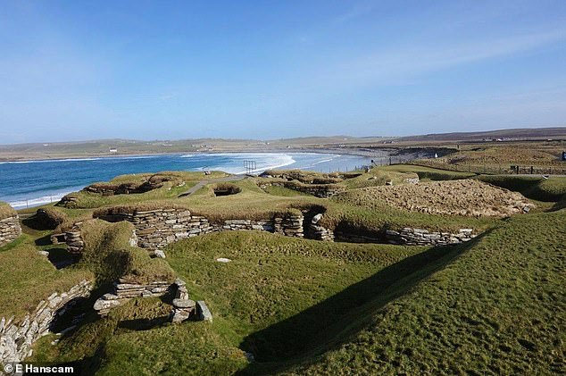 The landscape on the islands (pictured) 5,500 years ago was predominantly treeless, as it remains today, so marine seaweed provided a useful alternative fodder