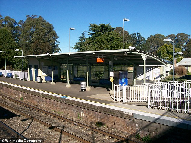 The man boarded atBargo Railway Station and police say he only stopped his assault after another passenger boarded the trainallowing the girl to disembark and report it to officers