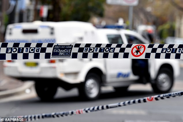 A man accused of setting a house ablaze and assaulting a firefighter in Sydney's north west has been refused bail