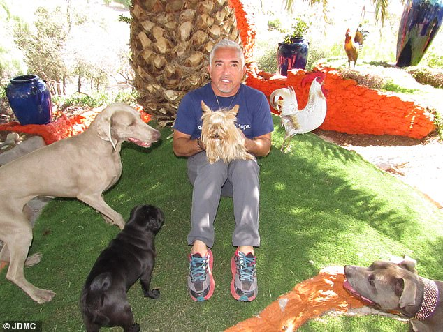 Cesar Millan opens his journey from being an illegal immigrant less than thirty years ago to a global television star today and why he believes immigrants are vital to the US economy  t