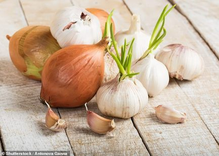 Eating onions and garlic every day 'reduces a woman's risk of breast cancer  by 67%' | Daily Mail Online
