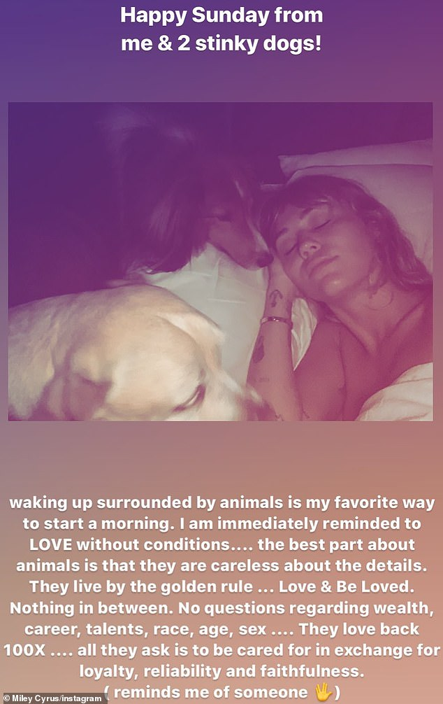 Miley Cyrus, 26, seems to be alluding to her soon¿to¿be ex-husband Liam Hemsworth, 29, and her former girlfriend Katilynn Carter, 31, in a post about her loving dogs