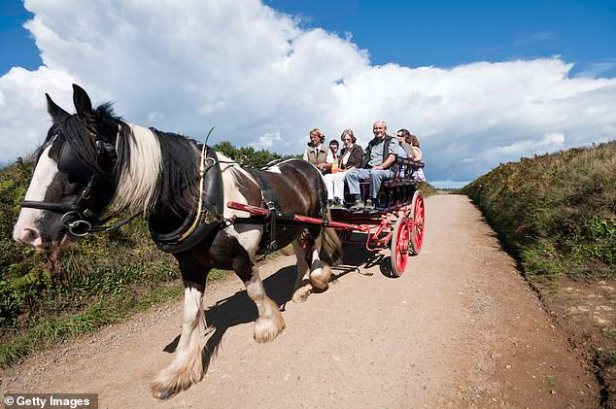 Police in Sark say they are facing a crime wave - including from drink drivers, even though cars are banned. Tractors can be used by otherwise they have to use a horse and cart