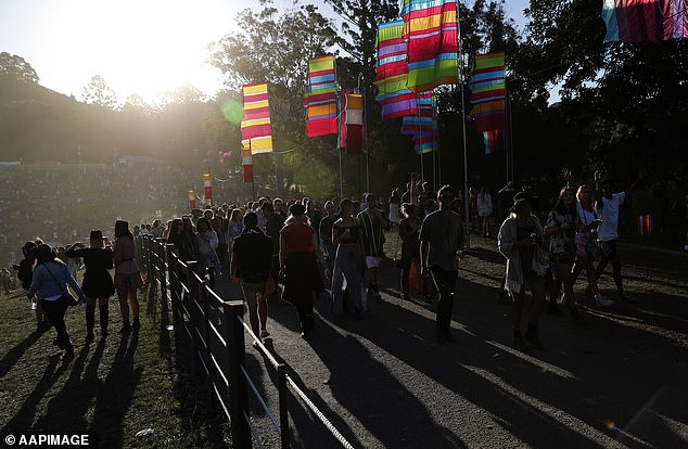 The teenager, then 16, attended the Splendour in the Grass music festival in Byron Bay, New South Wales (pictured:Splendour in the Grass 2019)