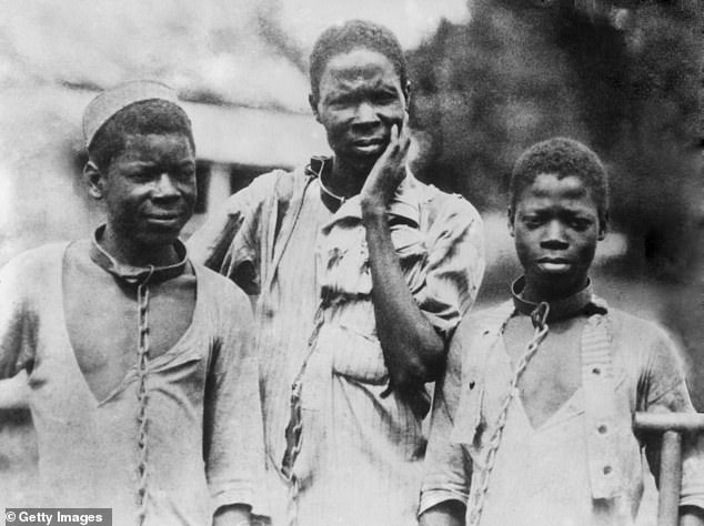 While the seminary found that it did not own slaves and that slaves did not build the school, its donors benefited financially from the slave trade and its administrators did, in fact, own slaves. The photo above, taken circa 1910, shows three Abyssinian slaves in iron collars and chains