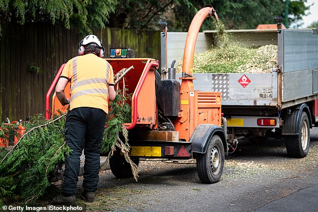 A woodchipper similar to the kind which claimed Mr Cirivakayawa's life last month is pictured above (stock image)