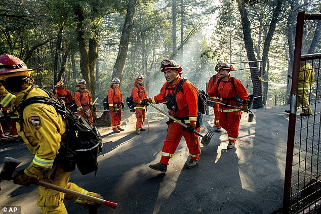 Inmate fighters battle the Kincade Fire near Healdsburg, California on Tuesday
