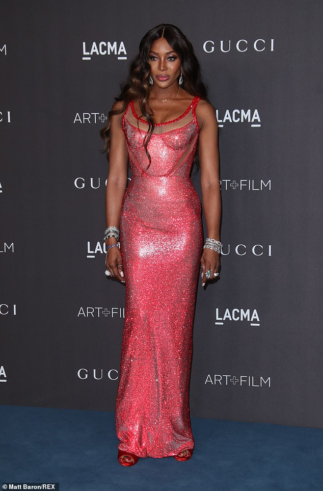Ooh-la-la:Naomi Campbell proved there's no stopping her as she attended the LACMA Art and Film Gala, held at the famous museum in Los Angeles on Saturday evening