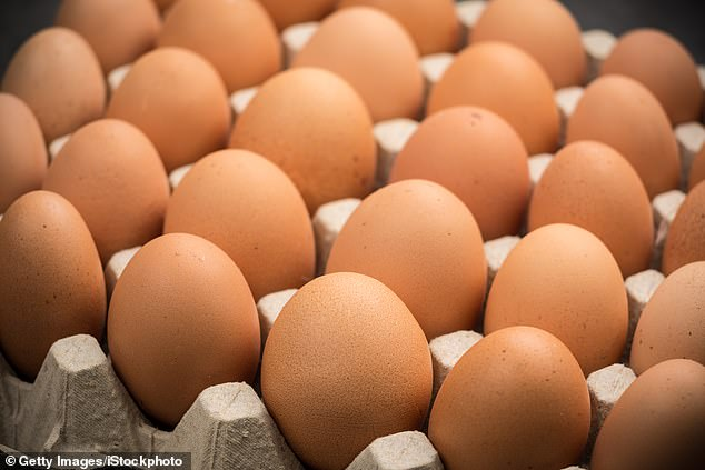 Image result for egg eating competition