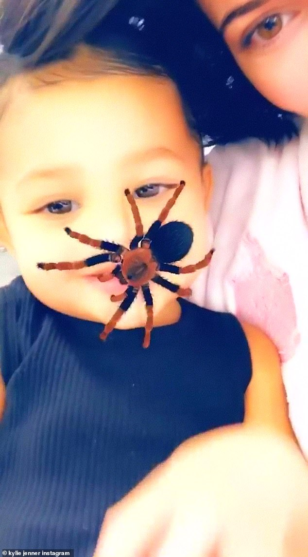 No big deal: But unlike the spider-loving Stormi, children have been freaking out over the arachnid, in videos posted online