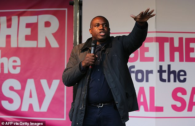 Labour MP David Lammy, pictured at People's Vote rally in October this year, described Mr Rees-Mogg's comments as 'unforgivable'