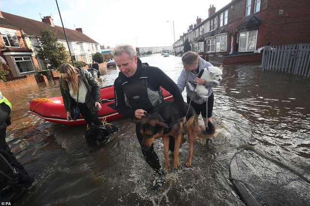 A dog is carried to safety in Doncaster today as parts of England endured a month's worth of rain in 24 hours