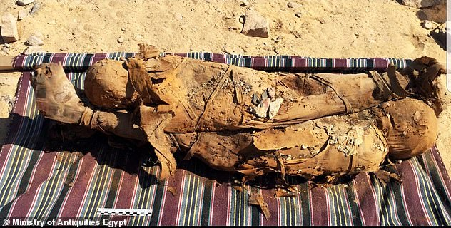 Researchers examined bone fragments from across four ancient Egyptian dynasties ending about 2,000 years ago at the Greco-Roman period when this mummified mother and child were thought to have been embalmed
