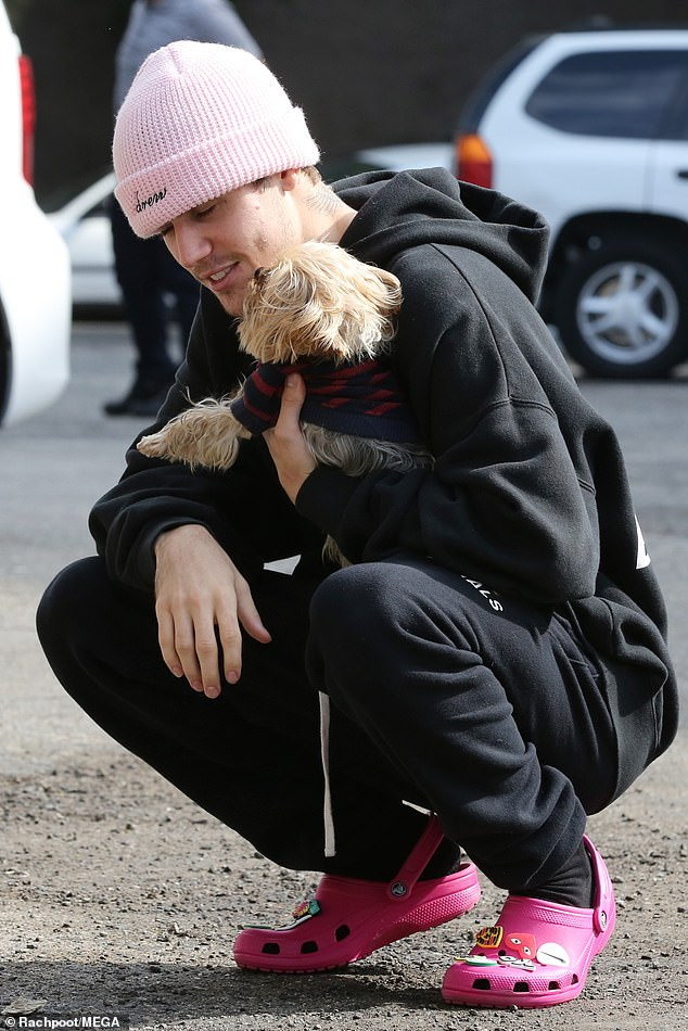 Cuddle session: The little dog gave Bieber a few kisses shortly after Justin arrived at the studio