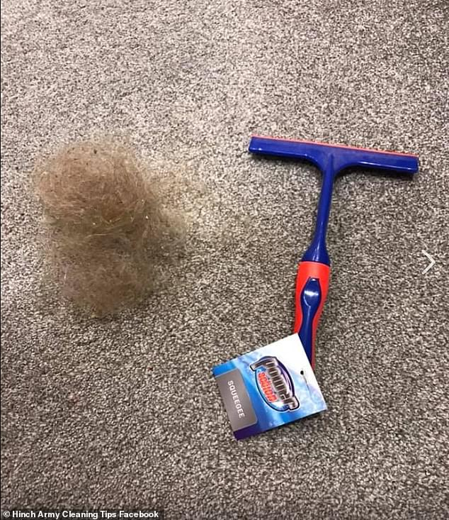 British mother Manda Goody admitted she was 'shocked' by how much of her daughter's long hair was pulled up by the squeegee (pictured) and shared a photo of the hairball