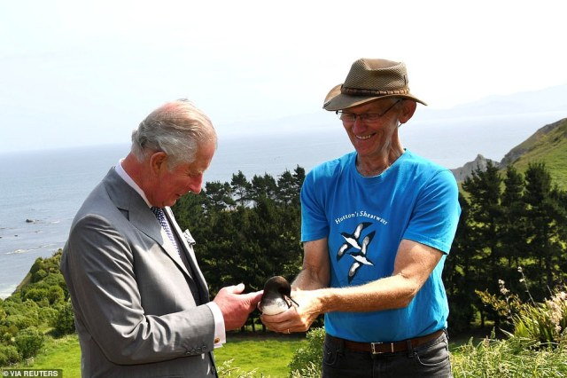 While at the Hutton's Shearwater Colony chairman Ted Howard opened an artificially created underground burrow to show Charles one of the birds, the only seabird in the world to breed in an alpine environment