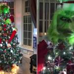 Thrifty Mum S Grinch Themed Christmas Tree Is Branded Goals Daily Mail Online