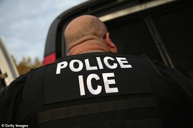 Hassoun was informed by former acting secretary of Homeland Security, Kevin McAleenan, on August 9 that, 'you will therefore remain in the custody of U.S. Immigration and Customs Enforcement (ICE) pending your removal from the United States or reconsideration of this decision'