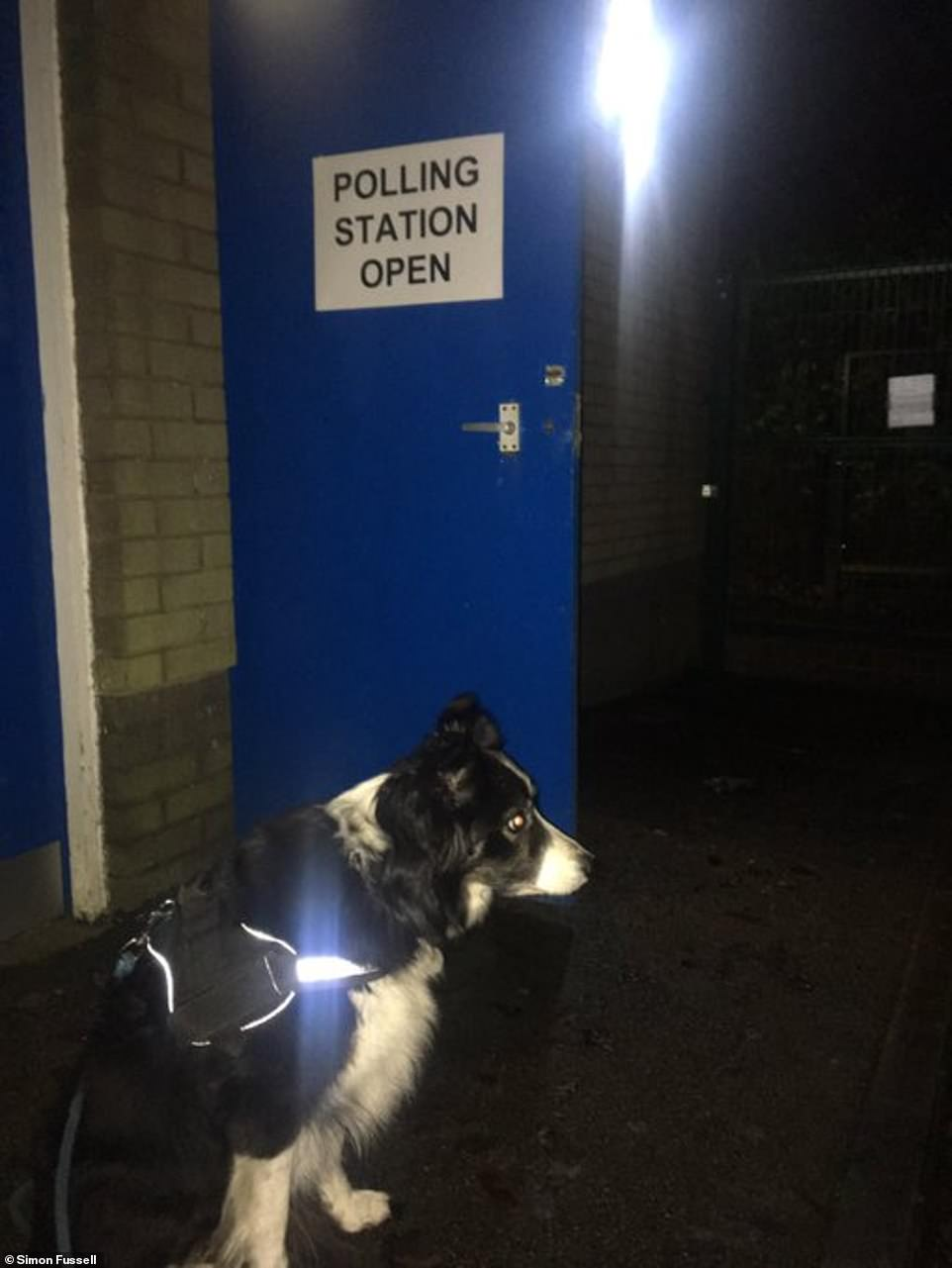 Lily the Border Collie was out and about this morning as her owner Simon took her to the polling station in Buxton today