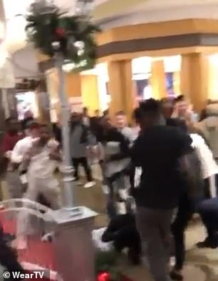 Police are examining video and talking to witnesses in an effort to track down at least eight boys involved in the brawl