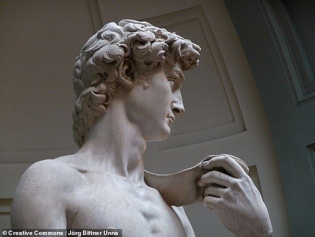 The prominent, swollen jugular vein in the neck of Michelangelo's David reveals that the sculptor knew certain details of the circulatory system a century before doctors.