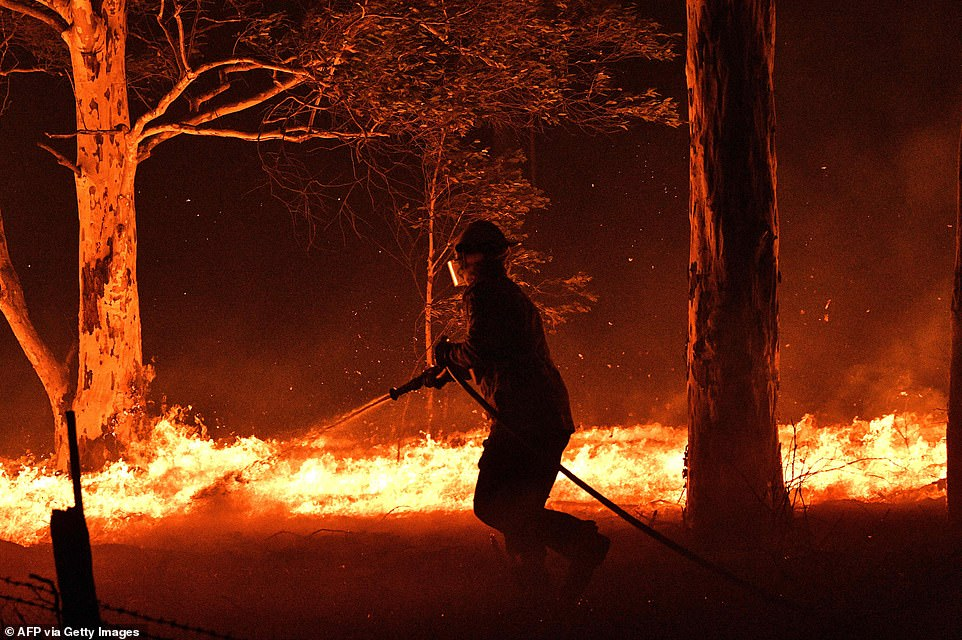 """Australian forest fires push the country towards """"humanitarian crisis"""""""