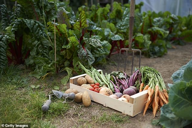 Chefs are finding time to grow their own produce now - with locally sourced goods on the rise