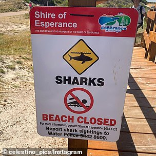 Twilight Beach was closed on Tuesday afternoon after sharks were spotted feeding on a human corpse