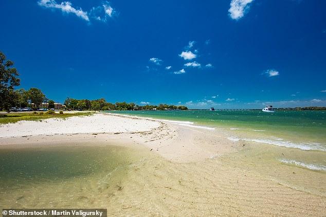 Bribie Island (pictured) off Queensland's Sunshine Coast is a popular swimming spot