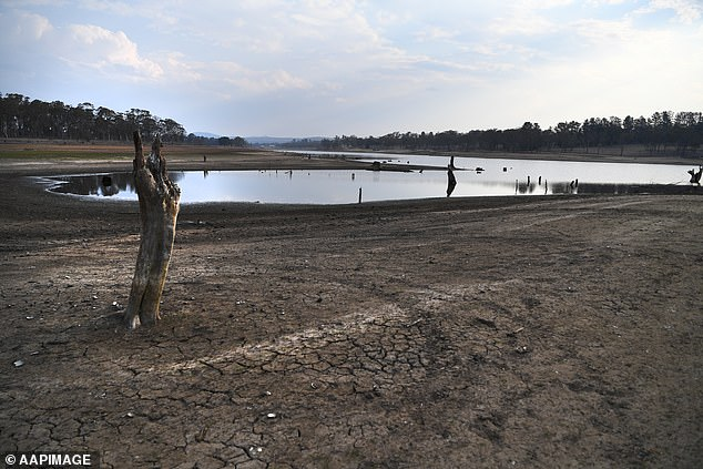 The Storm King dam, which recedes and is severely dry, is shown near Stanthorpe. The city council has now been forced to transport 42 trucks full of water per day from a dam 60 km north