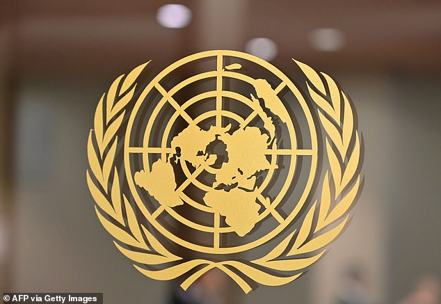 The United Nations (symbol pictured) is an intergovernmental organization responsible for maintaining international peace, through enforcing human rights as well as offering humanitarian aid