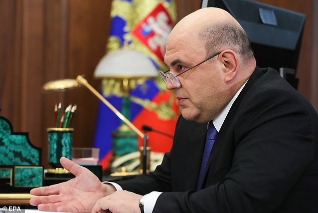 As Medvedev's successor, Putin nominated the little-known head of Russia's tax service,Mikhail Mishustin (pictured)
