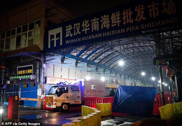 The majority of patients have been traced to the Huanan Wholesale Seafood Market (pictured)