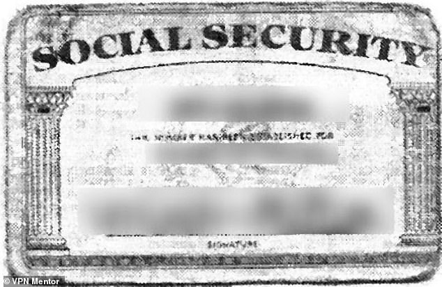 Social security numbers were among the extremely sensitive documents that made that were stored in the database without passwords