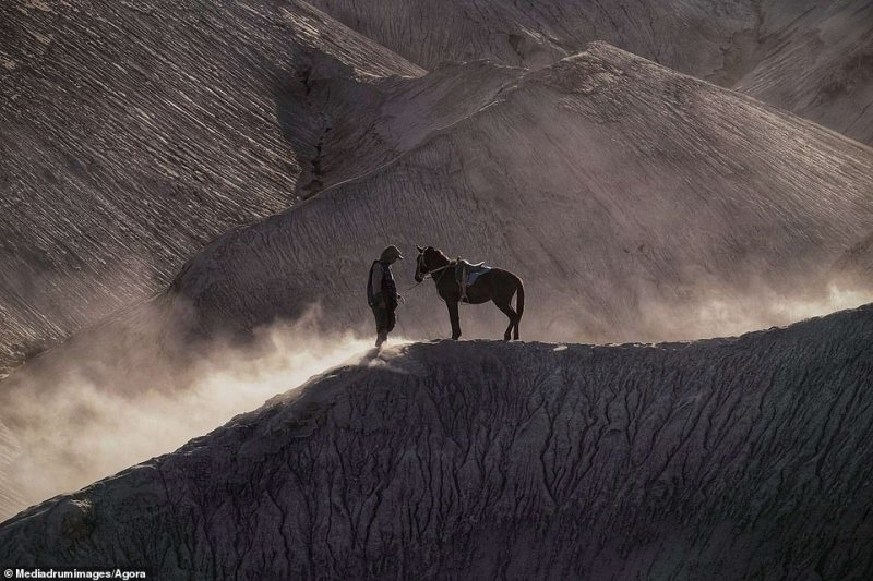 The powerful bond between humans and their four-legged friends is beautifully captured in this artistic image, titled 'My Best Friend'. It was taken on Bromo Mountain in Indonesia by Indonesian @priyowiddi and shows a nomadic herder and his horse, who trek over the mountain every day