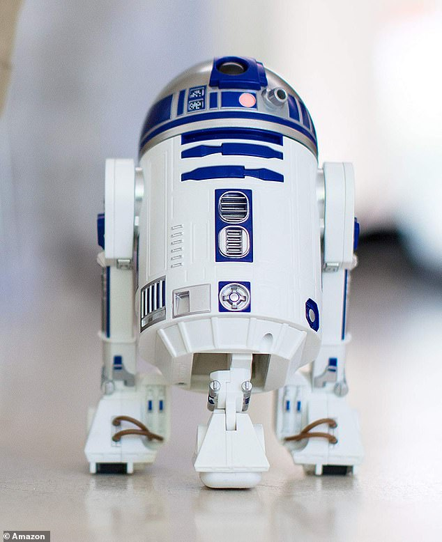 The bird made sounds likened to fictional Star Wars robot R2D2 (pictured)