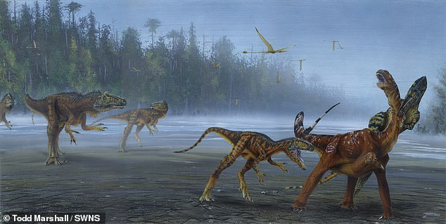 An artist's impression of the Allosaurus jimmadseni species attacking juvenile sauropod