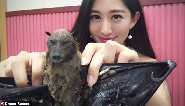 The Chinese travel presenter who ate a bat asks the public for forgiveness for the coronavirus outbreak