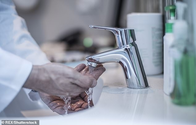 The World Health Organisation advises wearing washable or disposable gloves in public, and washing hands regularly with soap or alcohol-based cleaner (file photo)