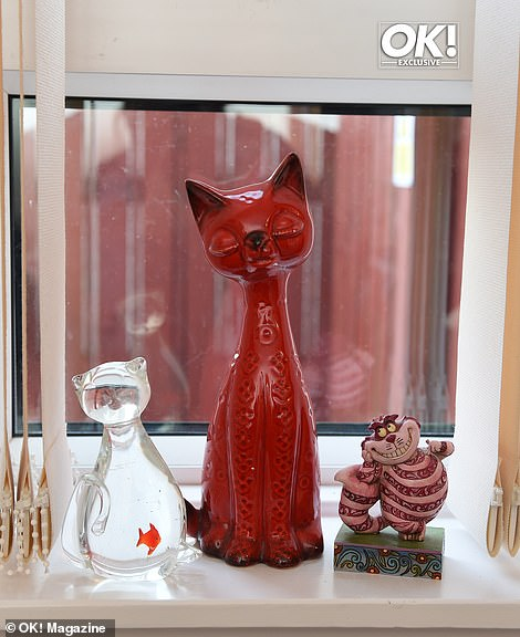Quirky: Susan's home also embodies her love of cats, with various feline-themed ornaments spread across her home